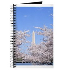 Cute Cherry blossom season washington dc Journal