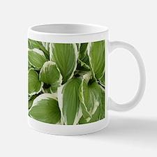 Hosta Mugs
