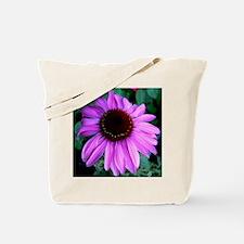 Purple Cornflower Tote Bag