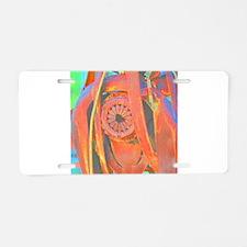 Florida photograph abstract Aluminum License Plate