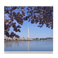 Unique Washington dc cherry blossoms Tile Coaster
