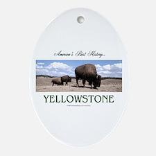 Yellowstone Americasbesthistory.com Oval Ornament