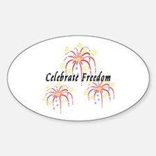 Usa July 4th Fireworks Sticker (oval)