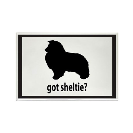 Got Sheltie? Rectangle Magnet