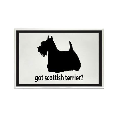 Got Scottish Terrier? Rectangle Magnet