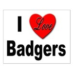 I Love Badgers Small Poster