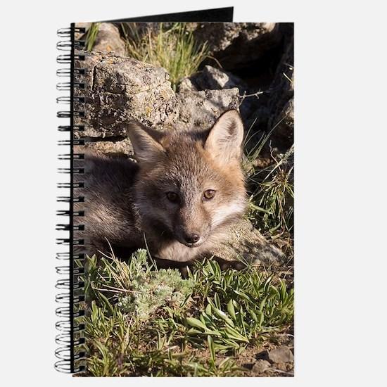 Cross Fox Kit Journal