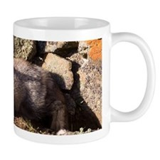 Cross Fox Kit Mug