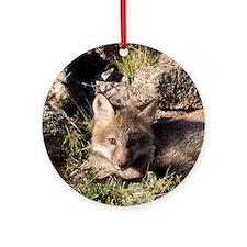 Cross Fox Kit Ornament (Round)