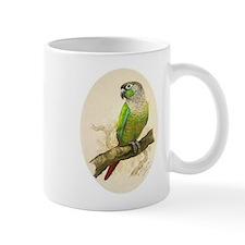 """Mug (small) """"Green Cheeked Conure"""""""