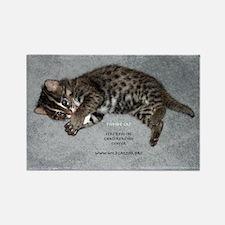 Fishing Cat Kitten Rectangle Magnet