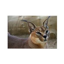 Caracal Rectangle Magnet