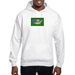 American Patriots Hooded Sweatshirt