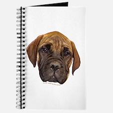 Bullmastiff Puppy Journal