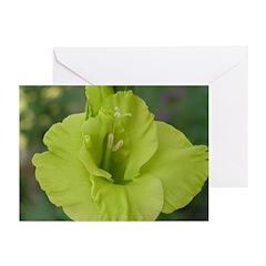 Green Gladiola Greeting Cards (Pk of 10)