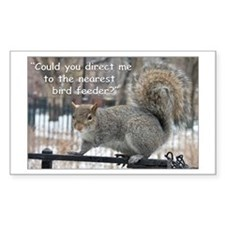 Squirrel Bird two Rectangle Decal