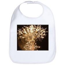 Seattle Space Needle Fireworks Bib