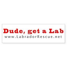 Dude, get a Lab Bumper Bumper Sticker