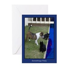 """Somethings Fishy"" Dog Card- Blank-pk10-boxed"