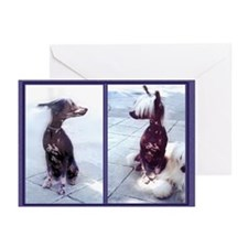 Seeing Double Chinese Crested Dog card blank/bx10