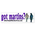 got martins? Sticker (Bumper)