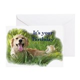 Golden retriever birthday Greeting Cards