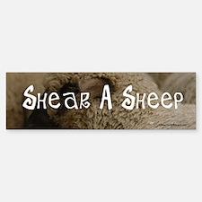 Shear a Sheep bumper sticker.