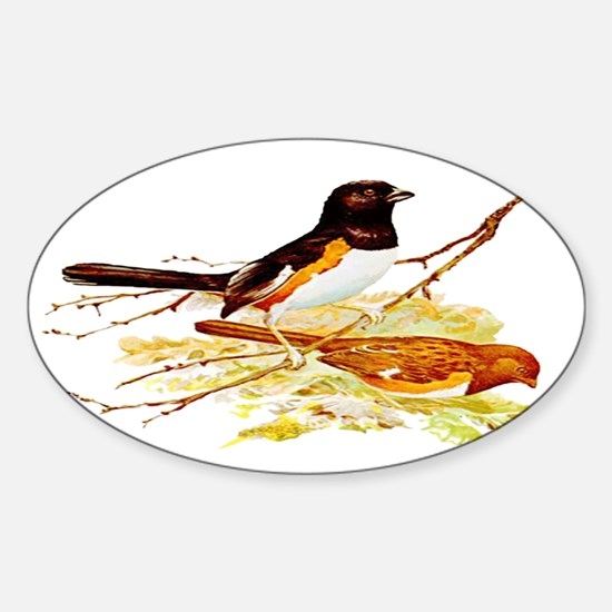 Towhee Oval Decal