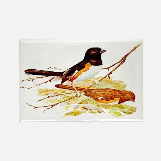 Towhee Rectangle Magnet
