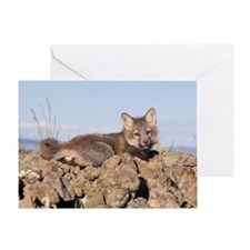 Cross Fox Kit Greeting Card
