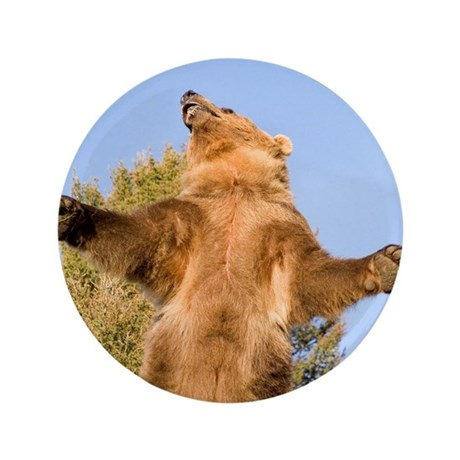 "Grizzly Bear 3.5"" Button (100 pack)"