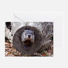 Groundhog Greeting Cards (Pk of 20)