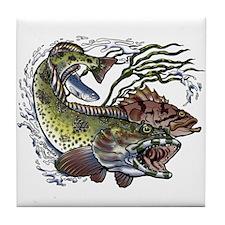 Lingcod, Rockfish & Salmon Tile Coaster