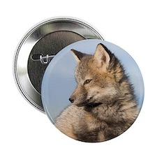 Cross Fox Kit Button