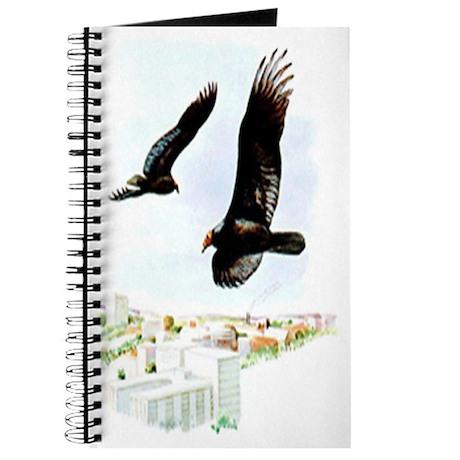 Turkey Vulture Journal