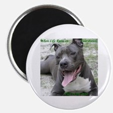 Smile With APBT Style Magnet