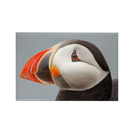 Puffin Boo!!! Rectangle Magnet