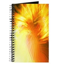 "Digital Art ""Firestorm"" Journal"