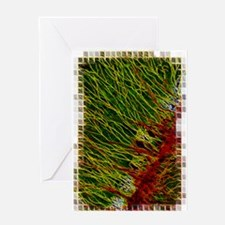 Cute Dendrite Greeting Card