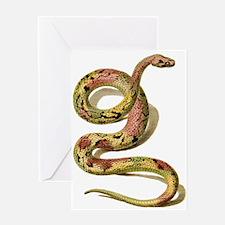 Sexy Snake Greeting Card