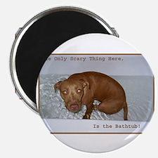 Bath Tub Pit Magnet