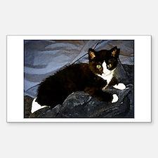 Tuxedo Kitten Rectangle Decal