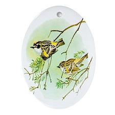 Myrtle Warbler Oval Ornament
