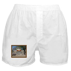 Fort Huachuca Boxer Shorts