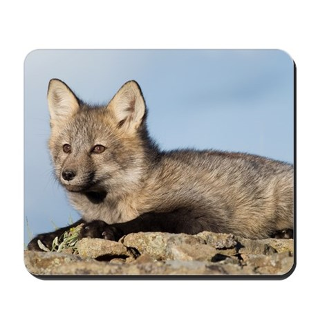 Cross Fox Kit Mousepad