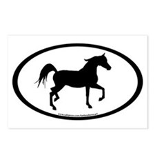 Arabian Horse Oval Postcards (Package of 8)