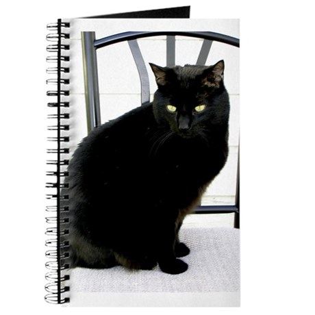 Kitty Journal