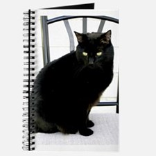 Kitty Journal