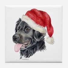 Christmas Stabyhoun Tile Coaster