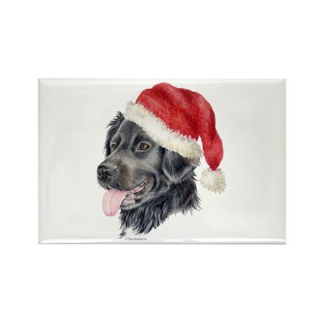 Christmas Stabyhoun Rectangle Magnet